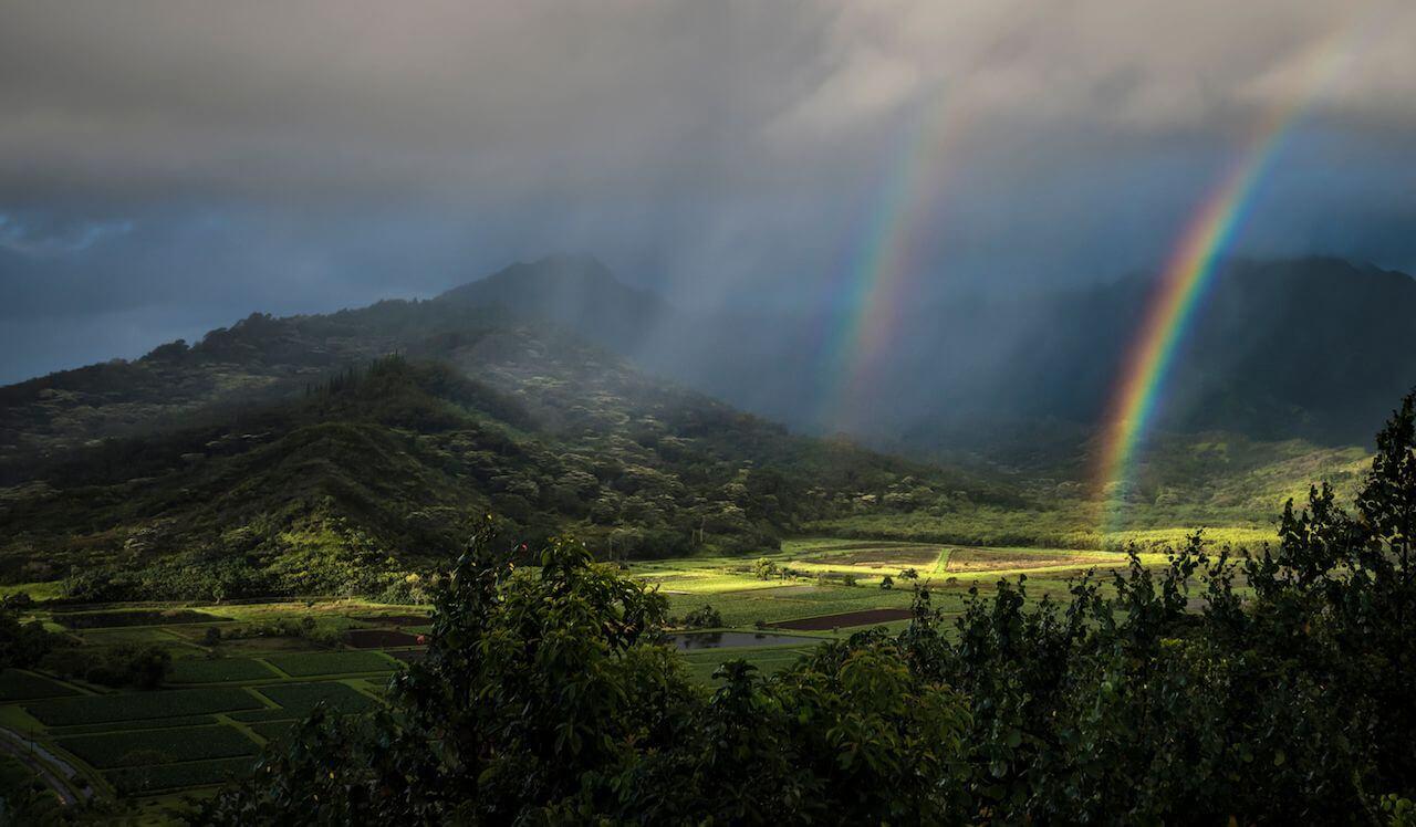 La isla de Kauai, nuestra favorita por su hermosa naturaleza