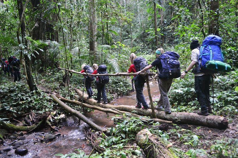 El Trecking es muy popular en Luang Namtha