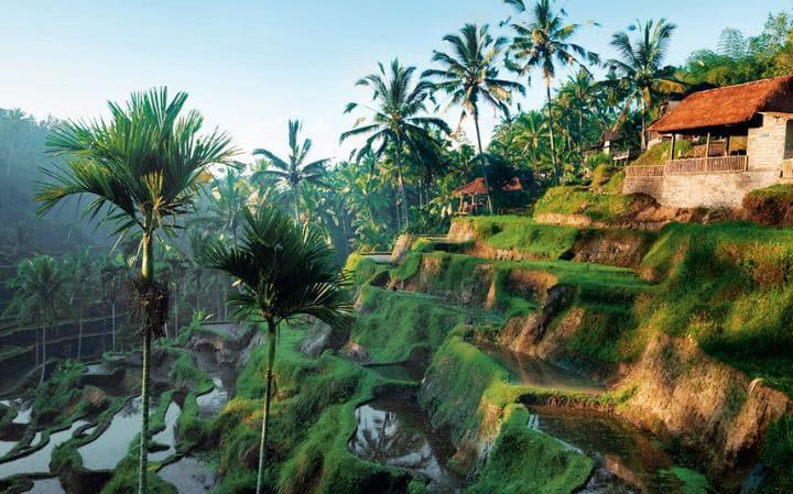 Lo que tienes de lindo lo tienes de turbio, Bali