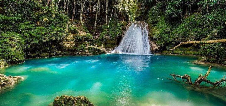 Naturaleza increíble en Jamaica